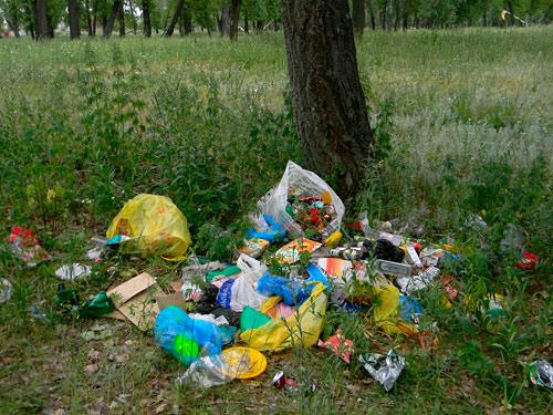 Уборка мусора в Энгельском лесу. О.Сазанка