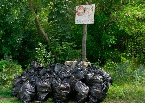 Уборка мусора. Экологическая акция в Энгельсе.а