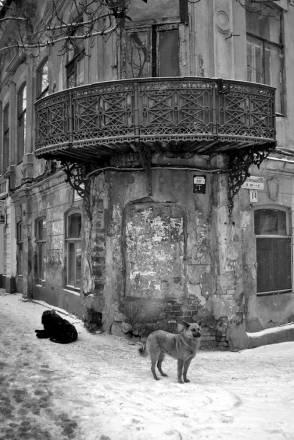 street-photo (Волжский р-н)