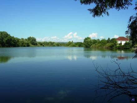 Один из прудов у Берёзиной речки