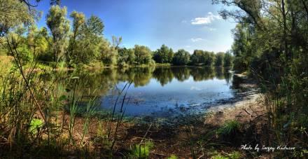 Озеро среди леса