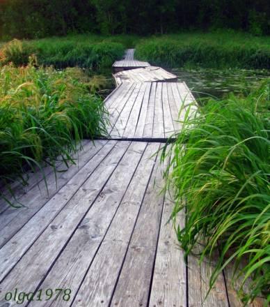 мосток через болото