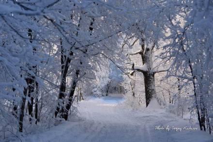 Зимний коридор