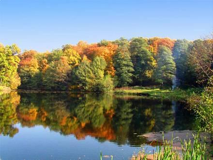 Андреевские пруды осенью. Саратовский лес.