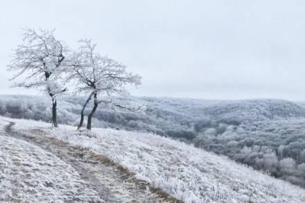 Первый снег 2009