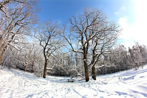 Зима на Кумыске