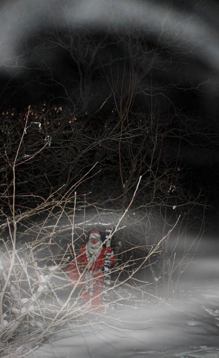 Дед Мороз в Саратовском лесу