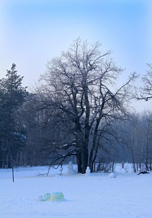 Снеговики в дозоре