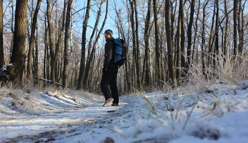 В Храме Зимнего Леса