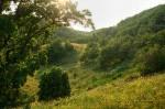 Долина холмов